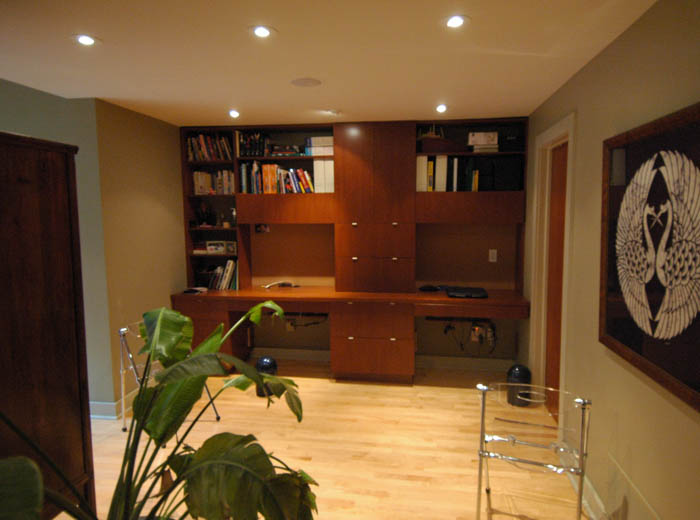 Custom home office with library